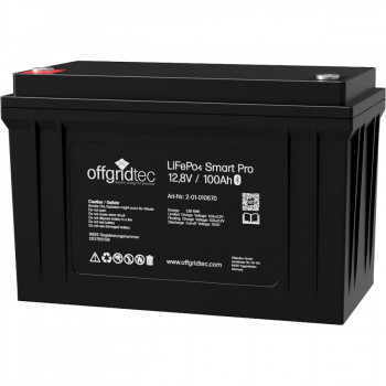 100Ah Lithium-Akku 12V LiFePo4 Smart-Pro 12/100 Batterie 1280Wh 12,8V